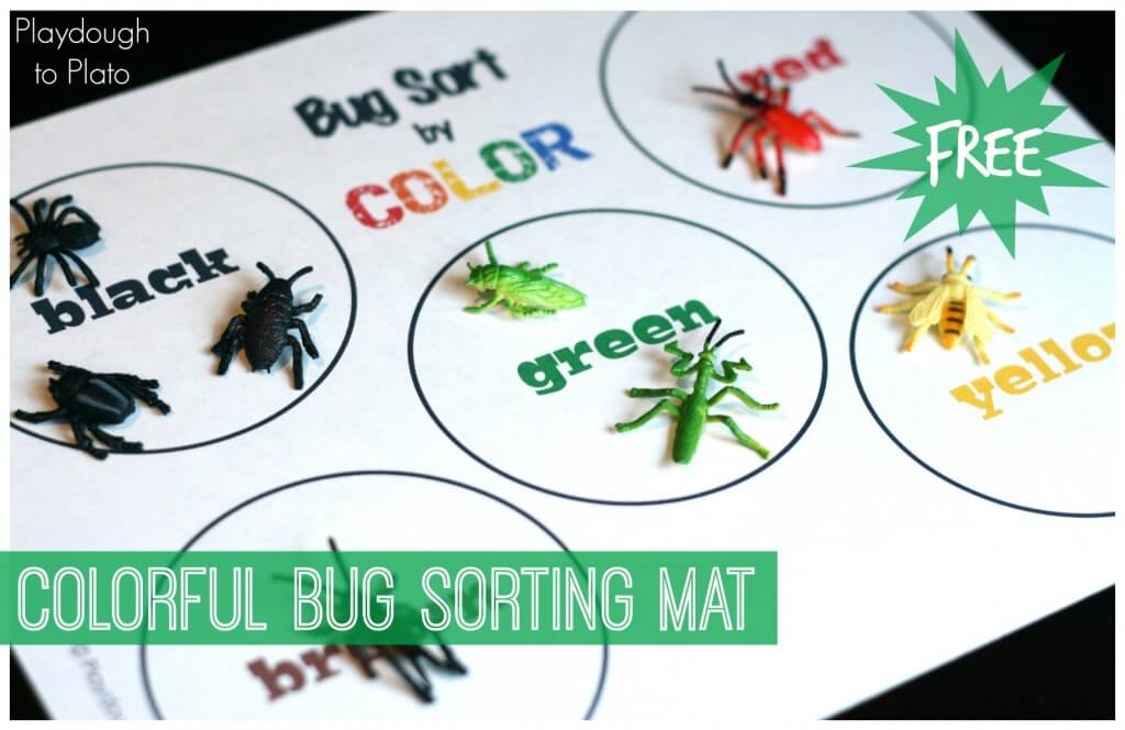 Colorful Bug Sorting Mat