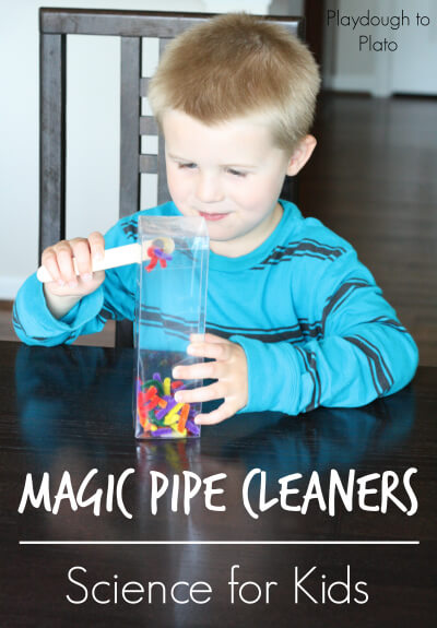 Magic Pipe Cleaners
