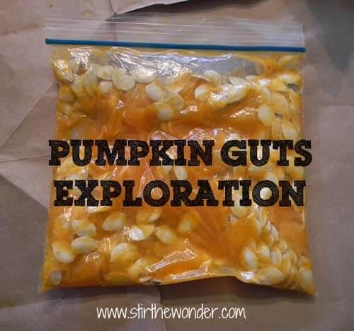 PumpkinGutsExploration
