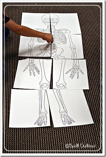 skeletonpuzzle[6]