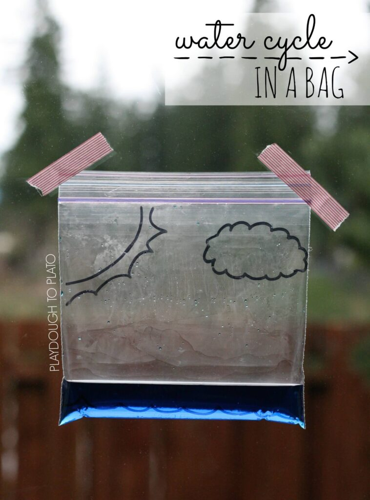 Super fun science for kids. Make the water cycle in a bag!