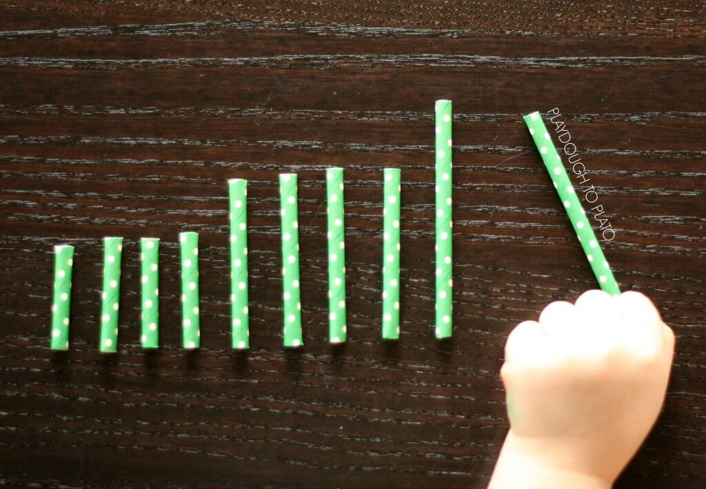 Simple sorting activity for preschoolers. Great for measurement and comparison.