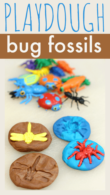 bug-fossils-playdough-