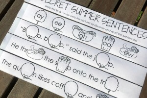 16 Secret Long Vowel Sentences for Summer