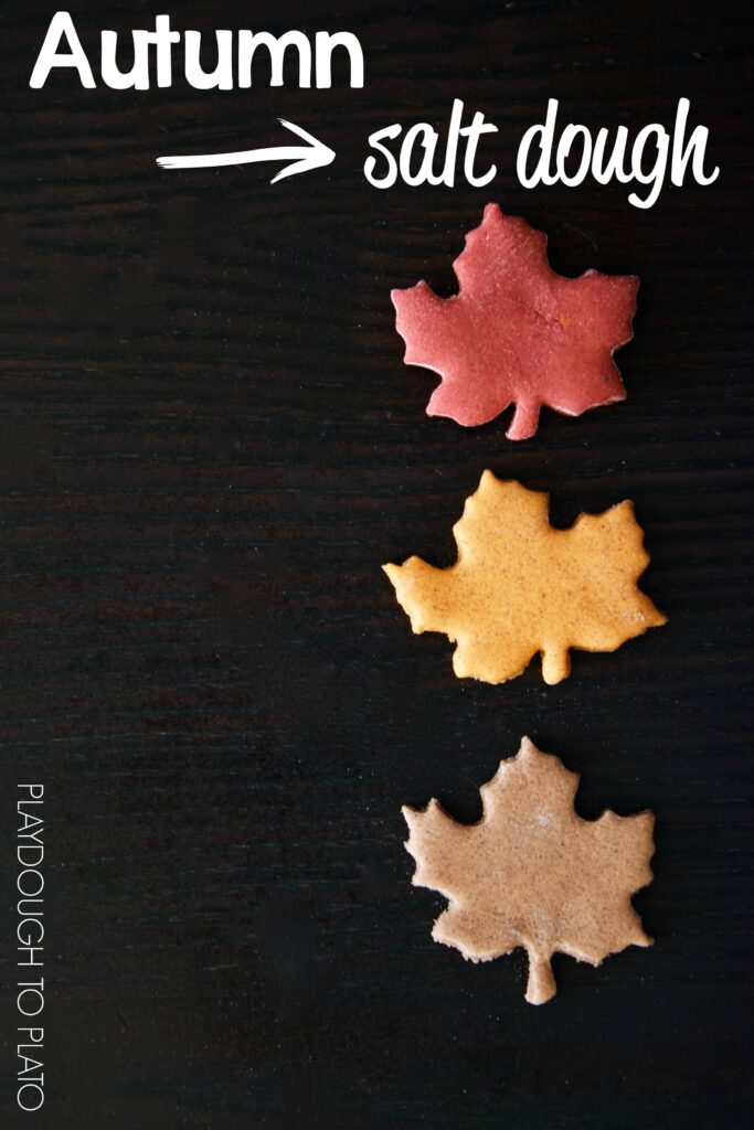 Autumn Salt Dough Recipes. Warm and spicy scents. Perfect for fall kid crafts!