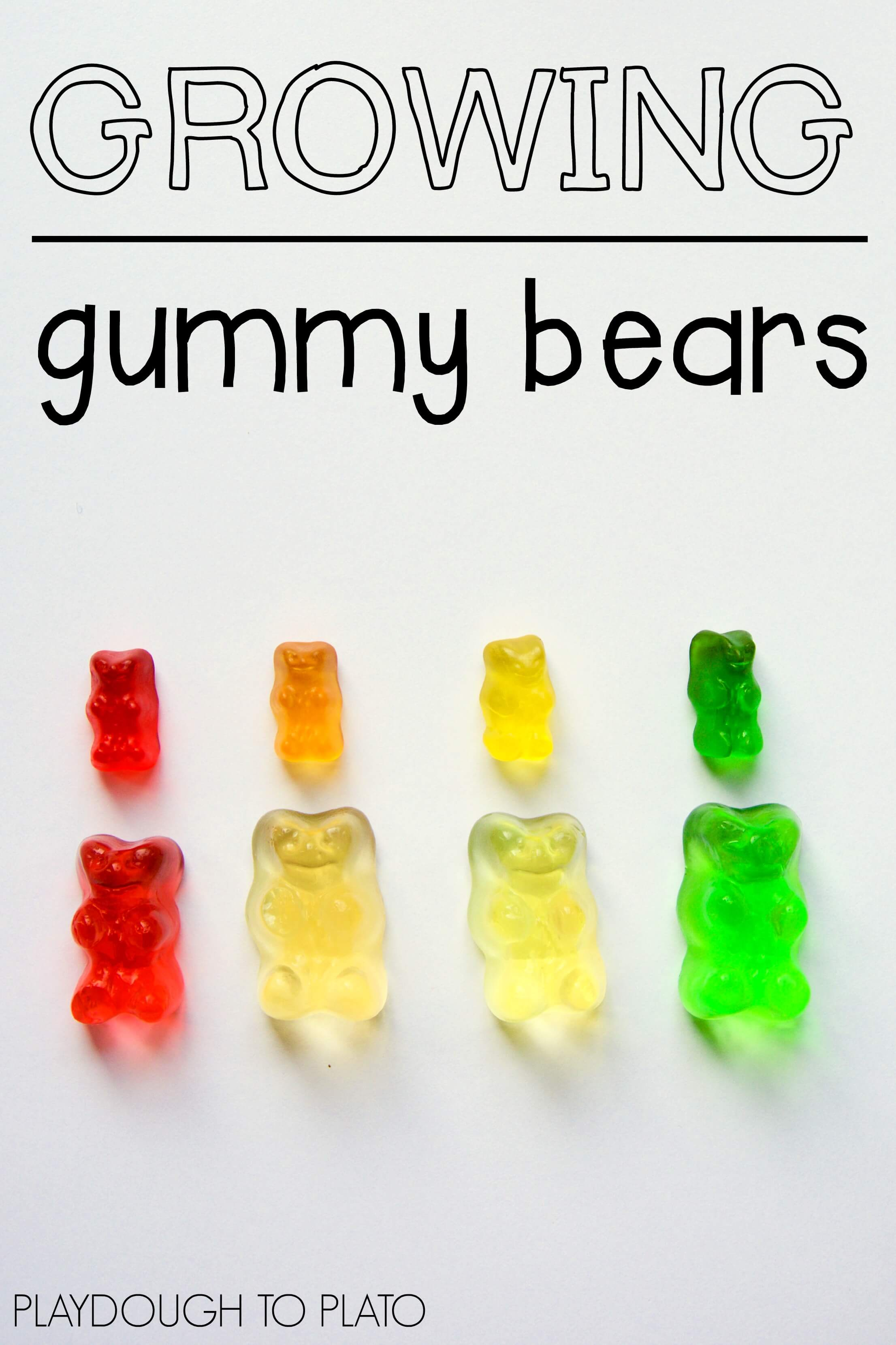 why does a gummy bear shrink in salt water