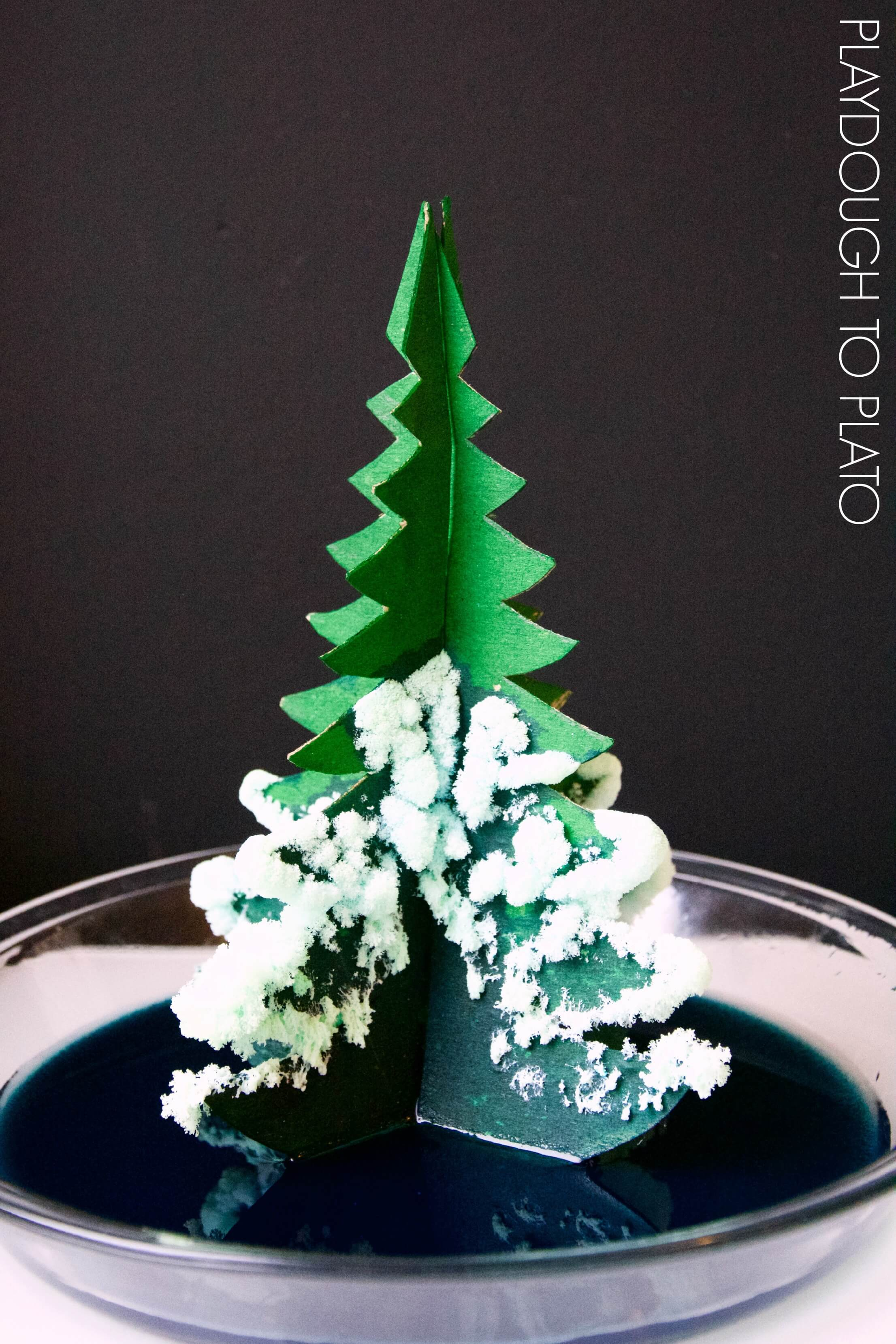 awesome crystal christmas trees this would be a perfect christmas science activity for kids - How Long Does A Christmas Tree Take To Grow