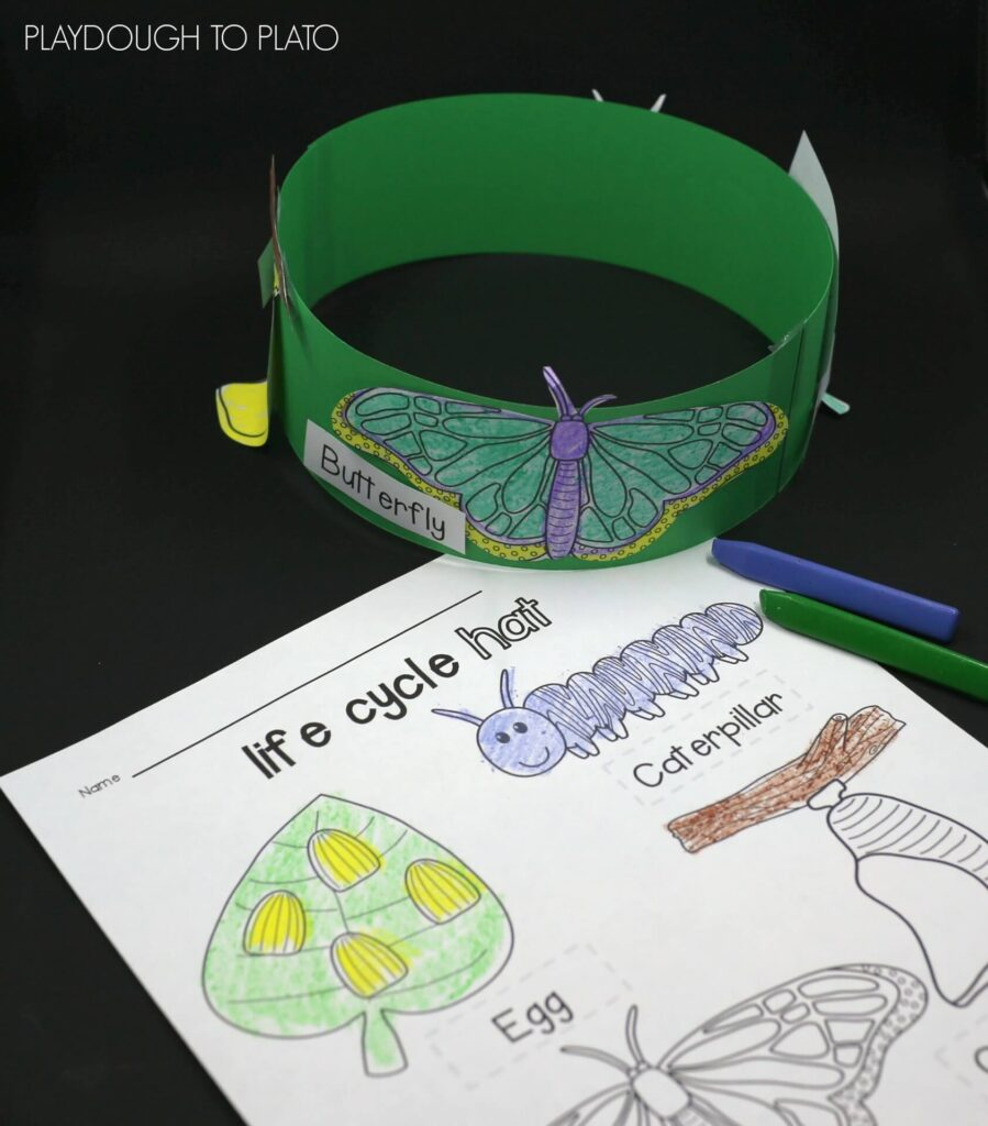 Fun butterfly life cycle hat for kids!