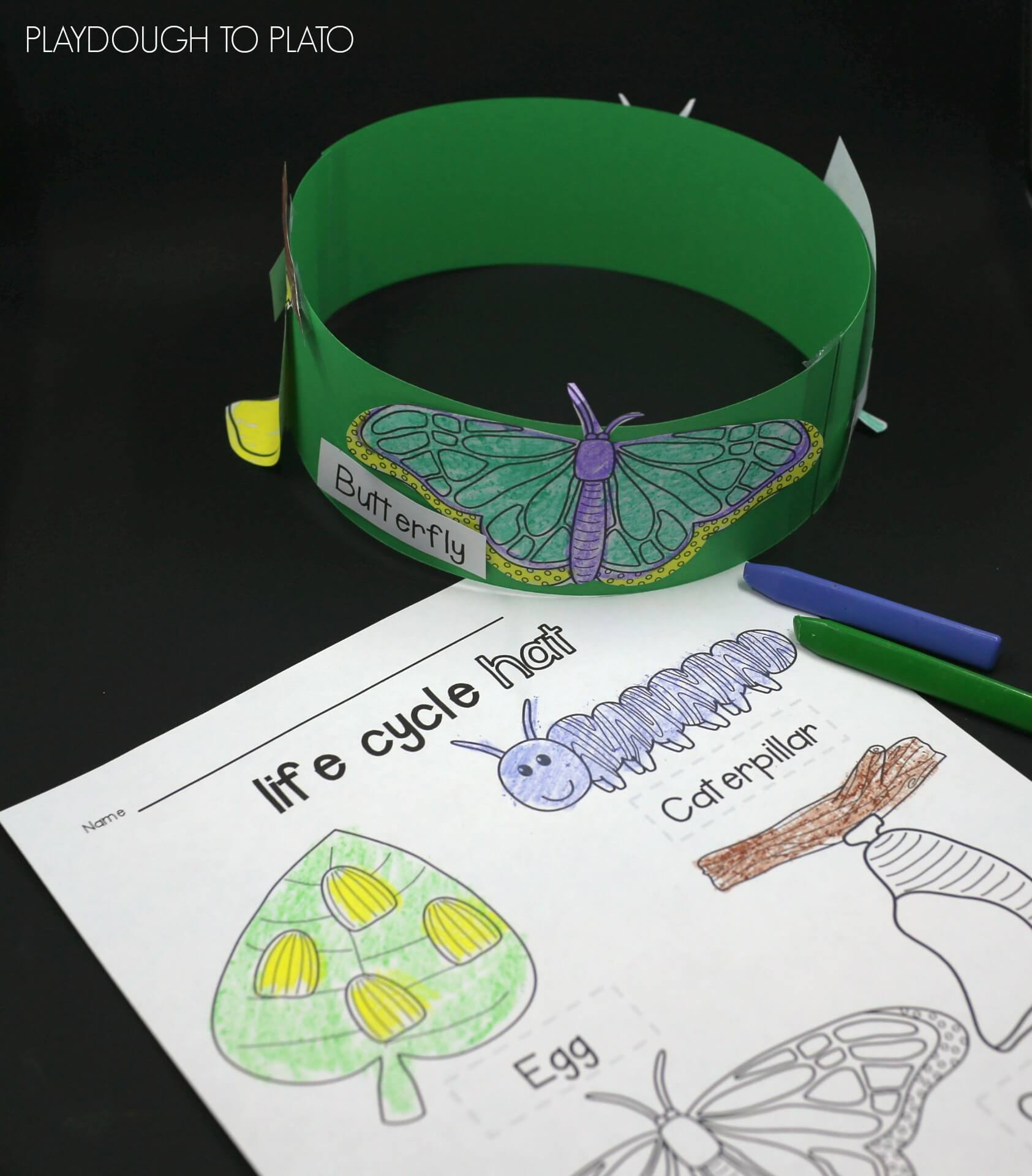 Butterfly Life Cycle Hats - Playdough To Plato