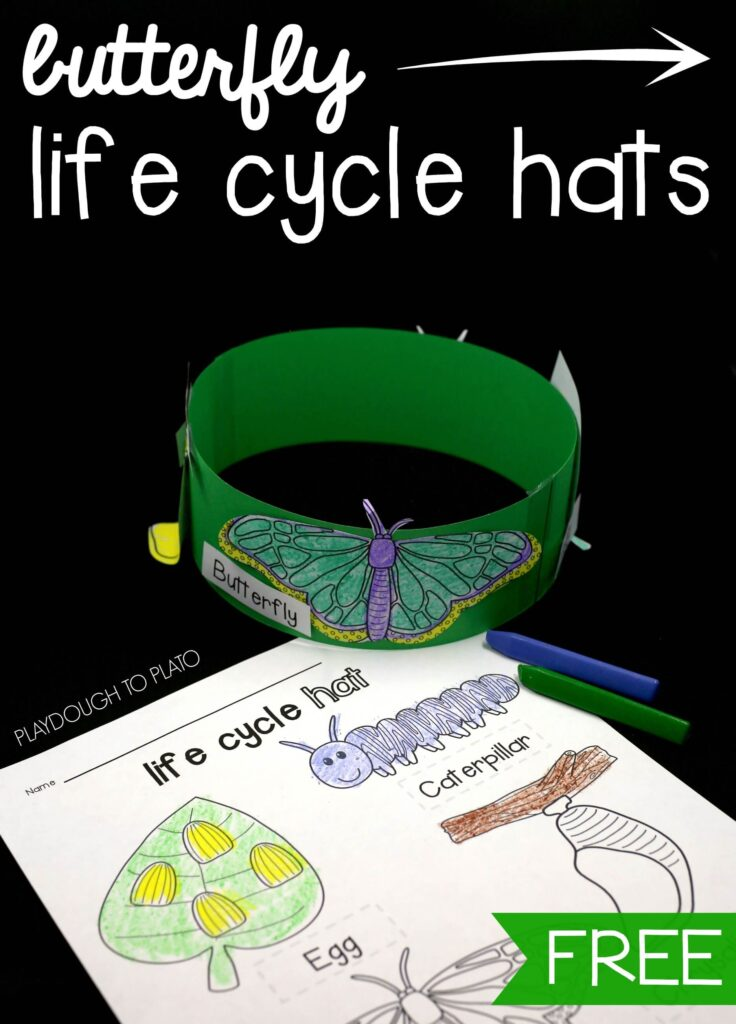 I love these free butterfly life cycle hats!