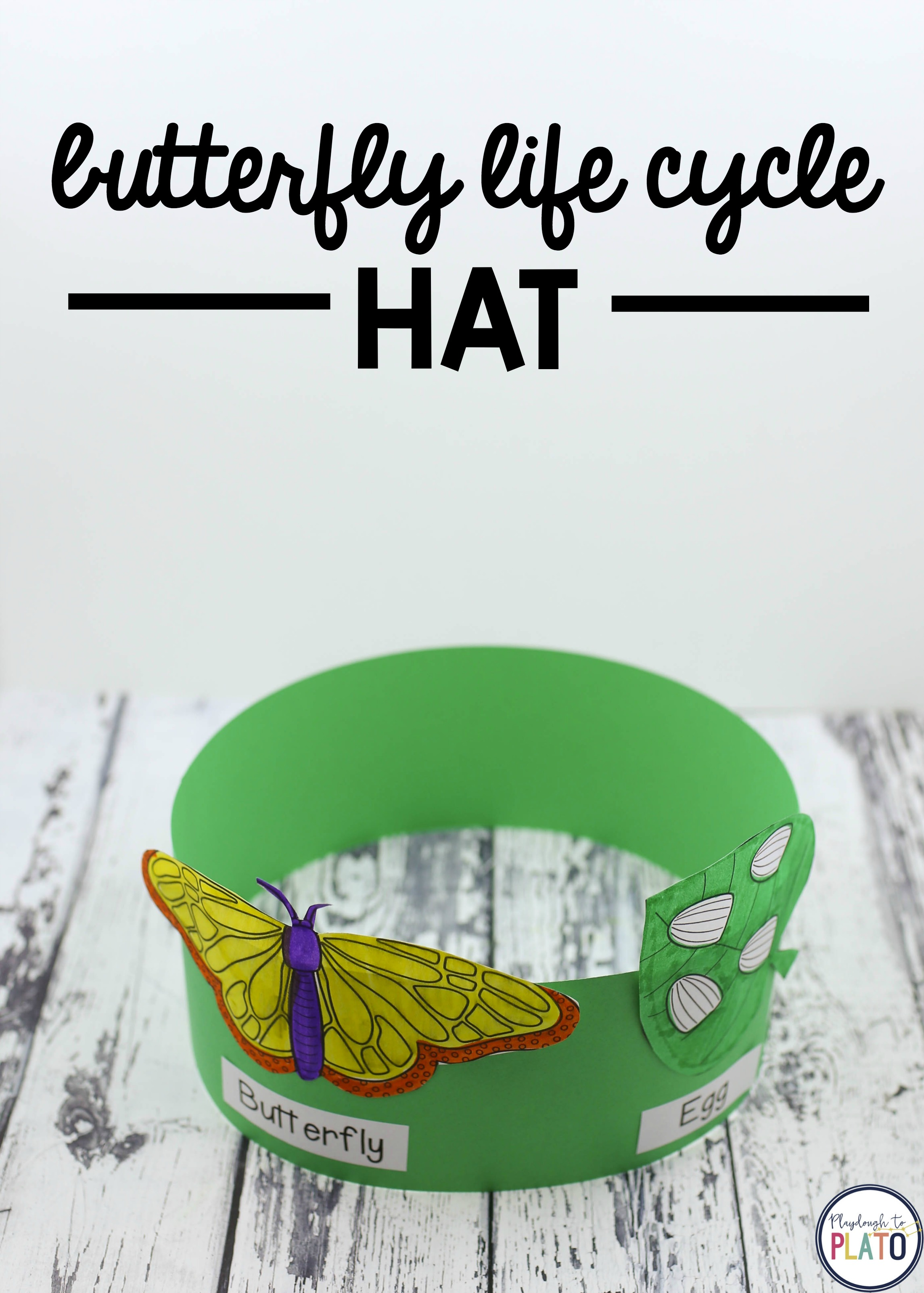 Bug and Butterfly Activity Pack - Playdough To Plato