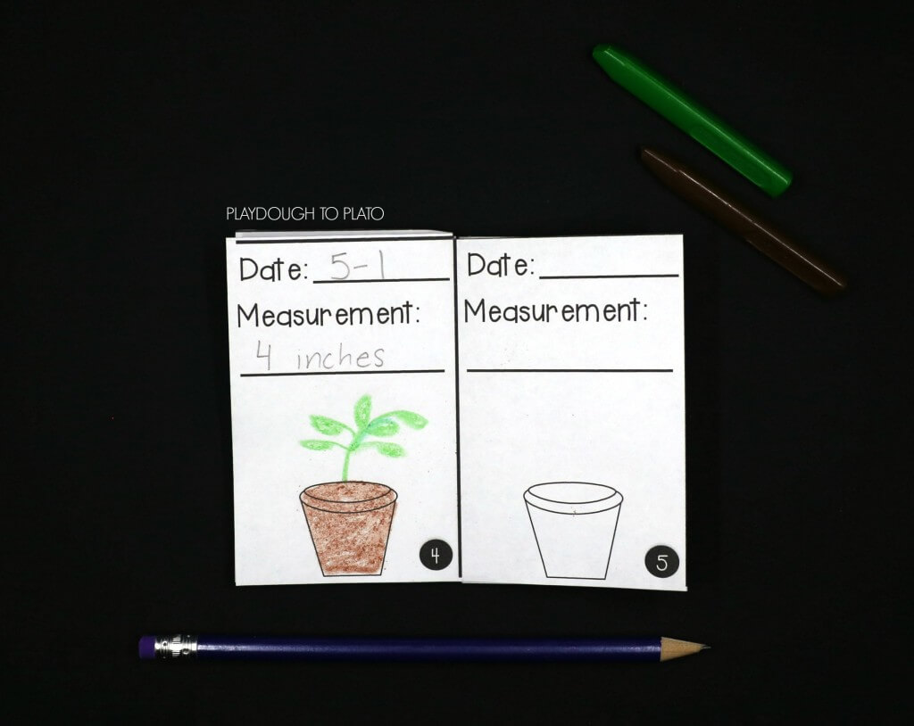 Keep track of plant observations in a plant journal!