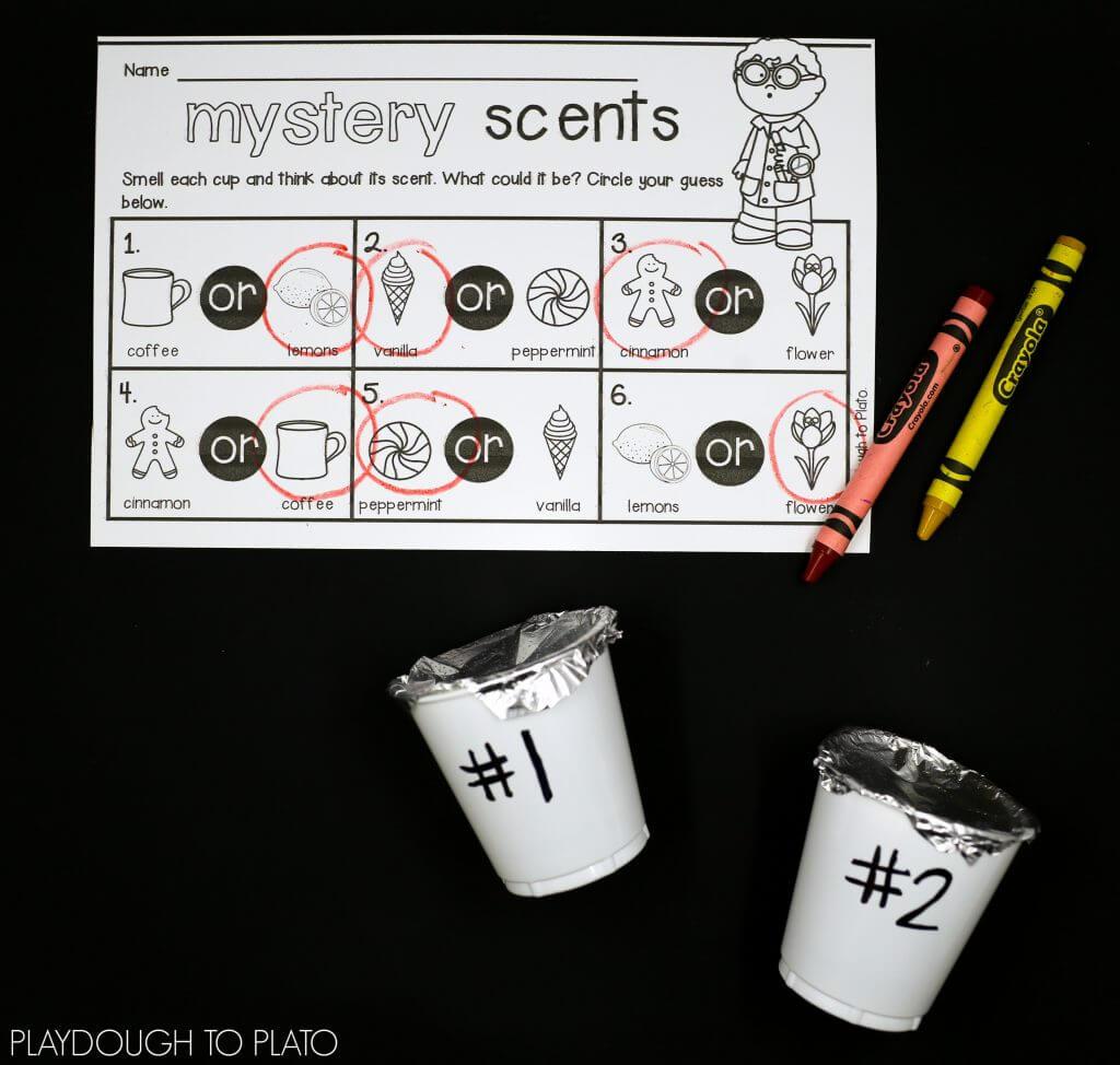 5 Senses-9