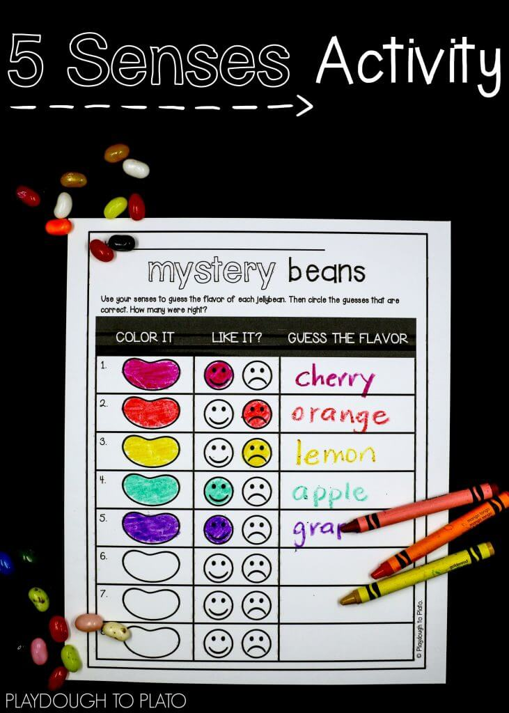 Use your senses to taste each jellybean. Then circle the guesses that are correct!