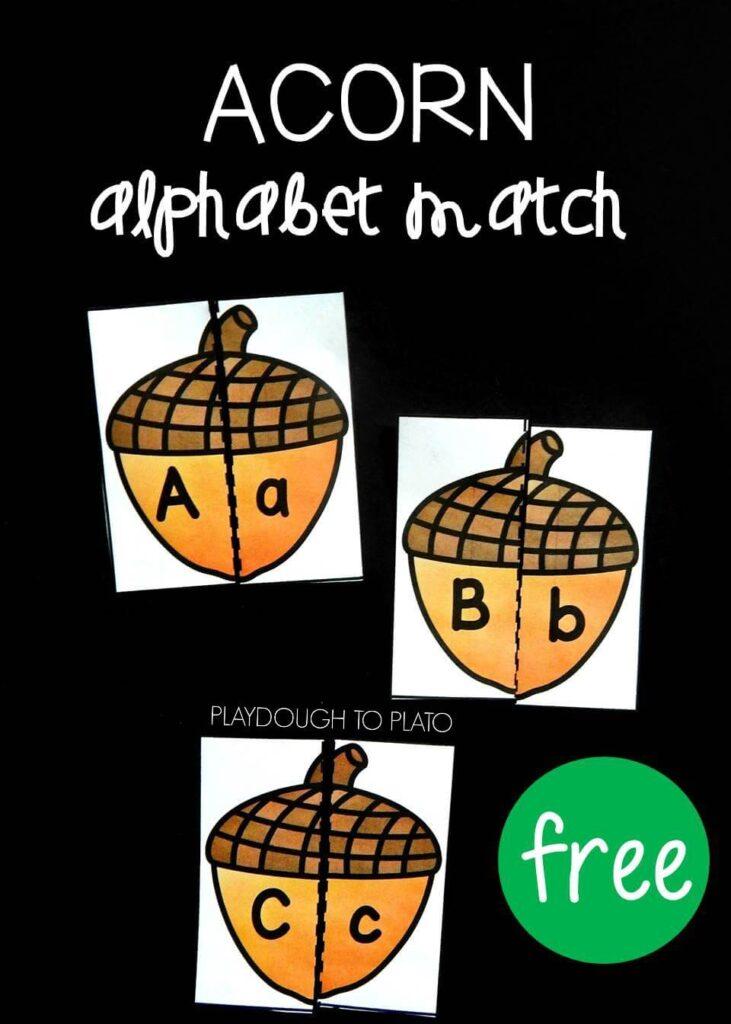 acorn-alphabet-match-pin