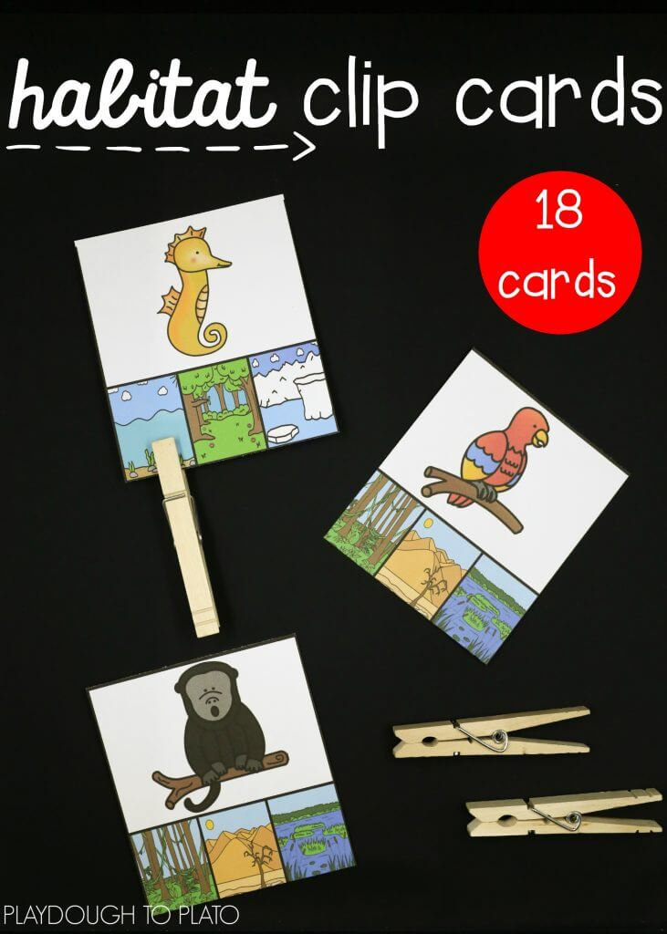 18-animal-habitat-clip-cards