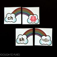 Rainbow Digraph Puzzles