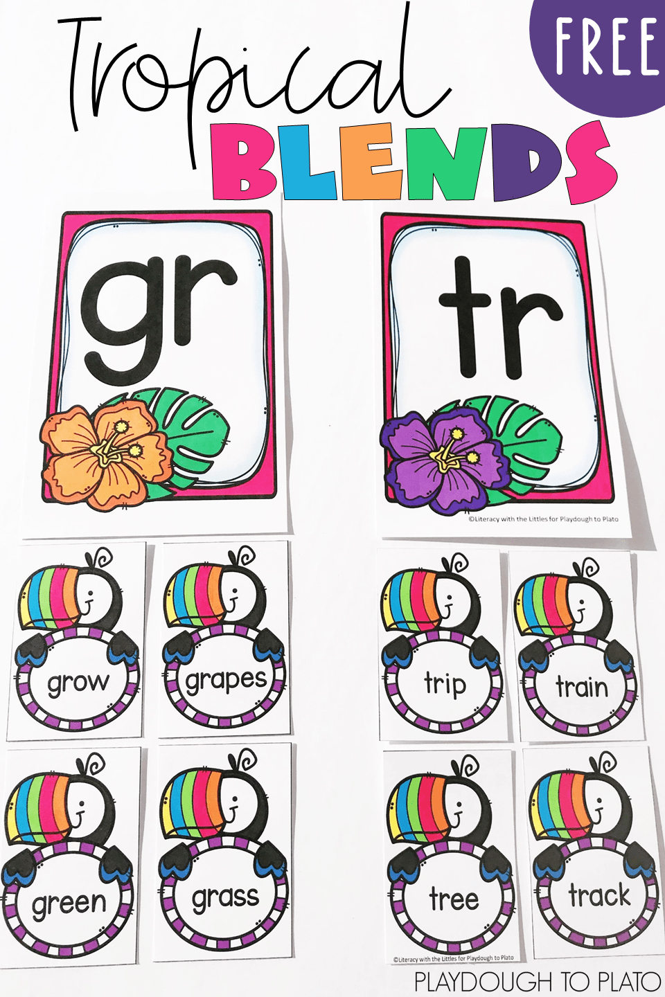 Tropical Beginning Blends Sort