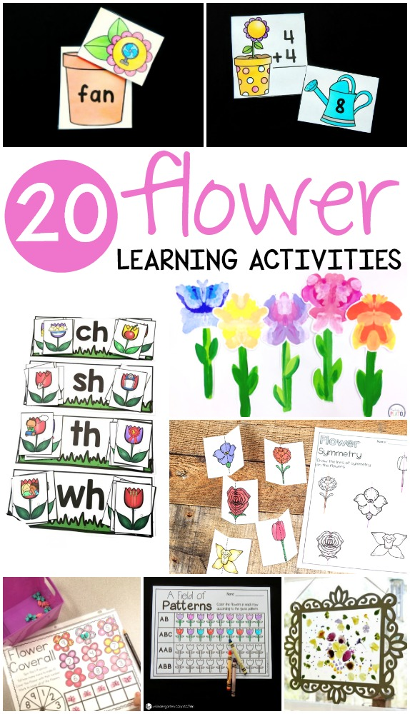 20 Flower Learning Activities