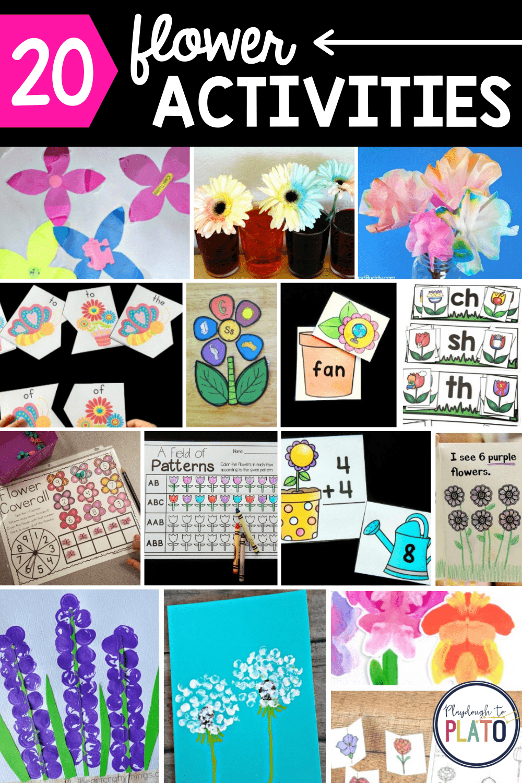 20 Flower Activities